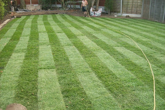 Quality Lawns
