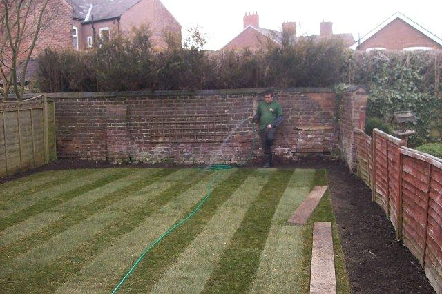 Garden Lawn 6